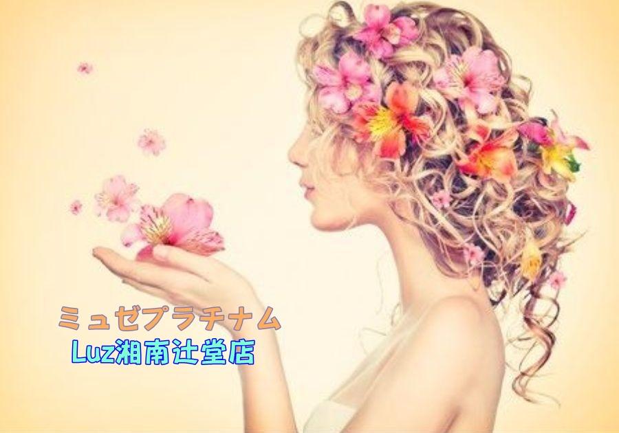ミュゼ Luz湘南辻堂店の店舗情報(料金,アクセス,予約)など